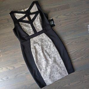 NWT Jax Champagne Cocktail Dress 🍸